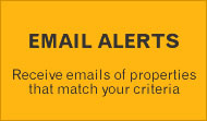 Create an email alert now
