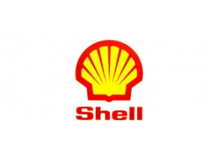 Toronto business for sale For Sale - SHELL Gas & Convenience, High Traffic Location Toronto E